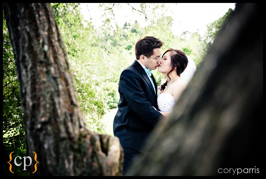 bride and groom kissing by a tree at colman park wedding in seattle