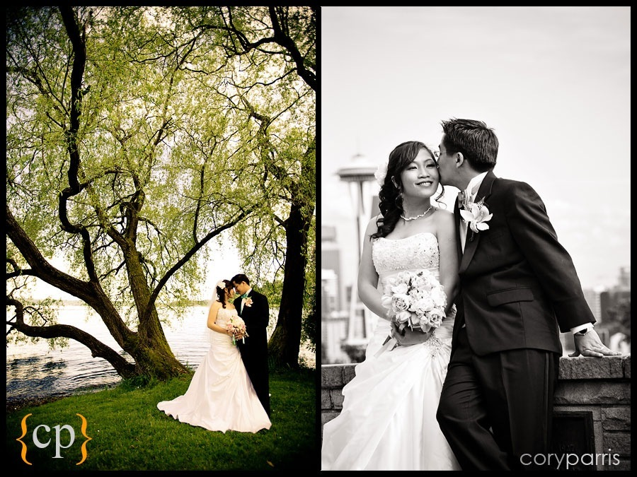 couple by a tree at colman park and wedding at kerry park in seattle by photographer cory parris