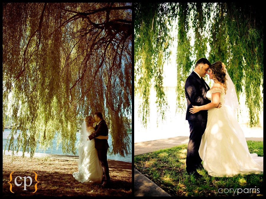 wedding photographs of bride and groom by willow tree in seattle