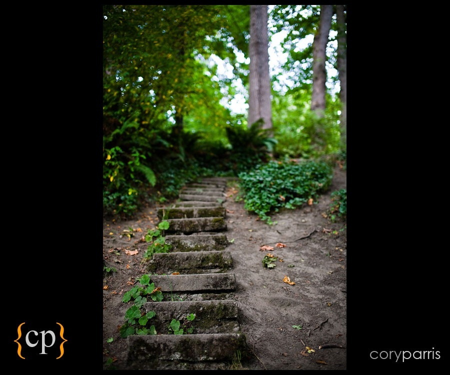 stairs in the woods by seattle photographer cory parris