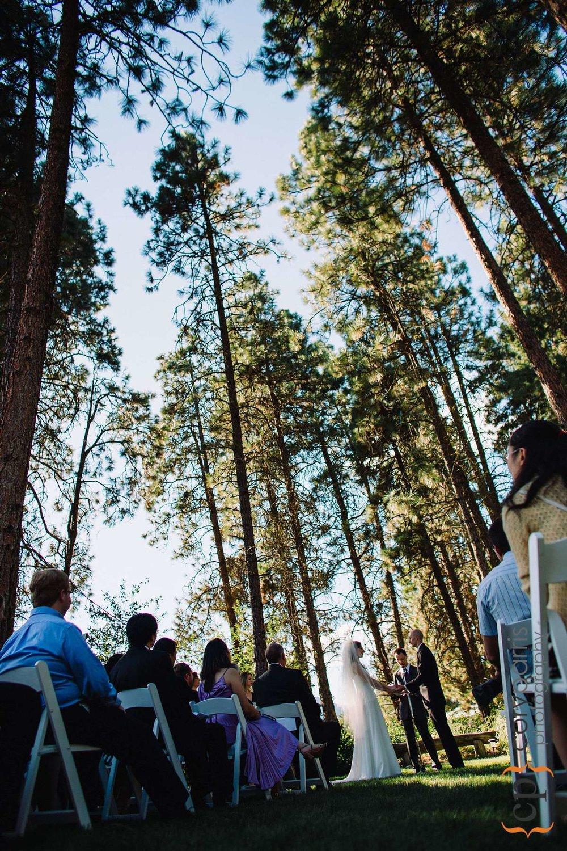Wedding ceremony in the woods in Leavenworth