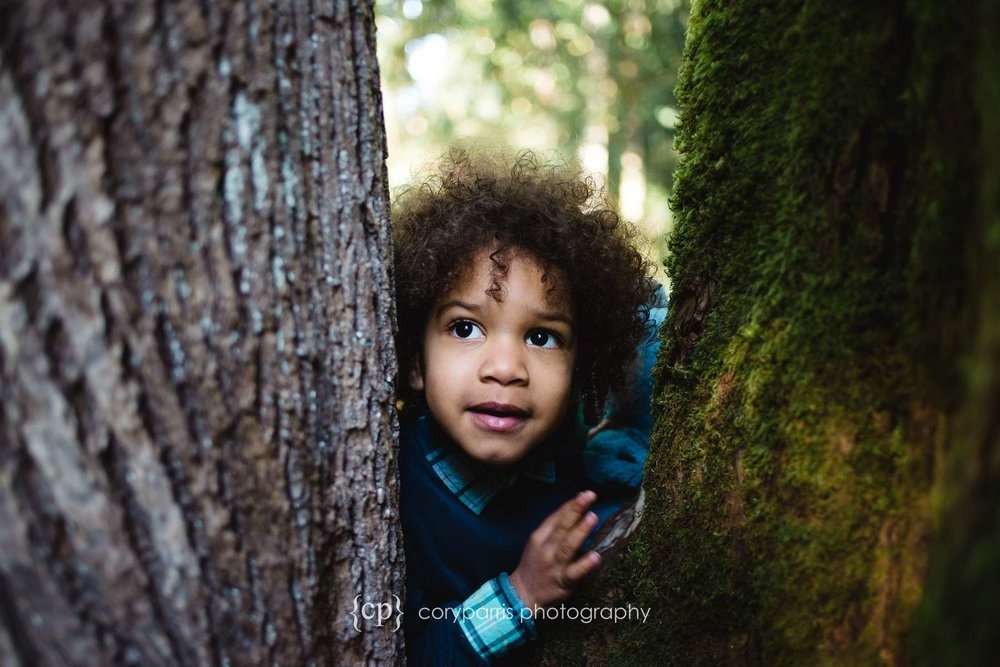 Portrait photography in Bellevue Botanical Gardens