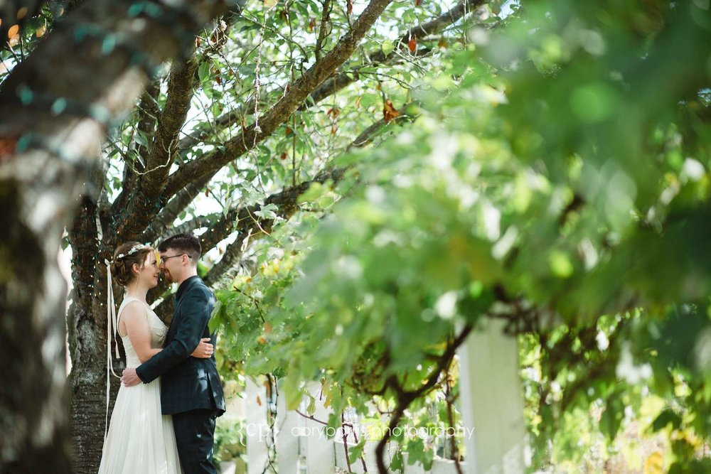Wedding photography with grape vines at DeLille Cellars Chateau in Woodinville