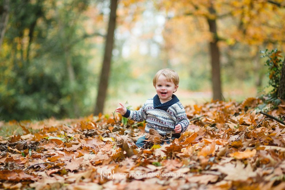 Little boy in fall leaves child portrait photography