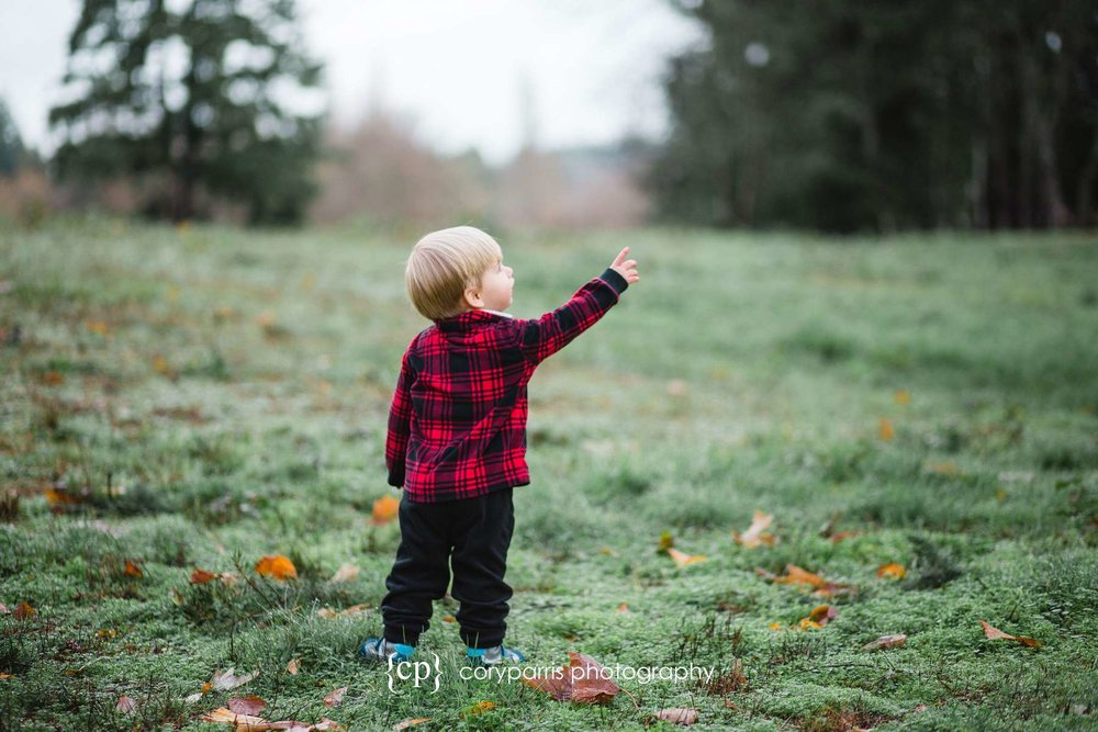 Child portrait boy points at sky Bothell photography