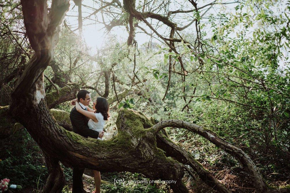 282-Arboretum-Seattle-wedding-photography.jpg