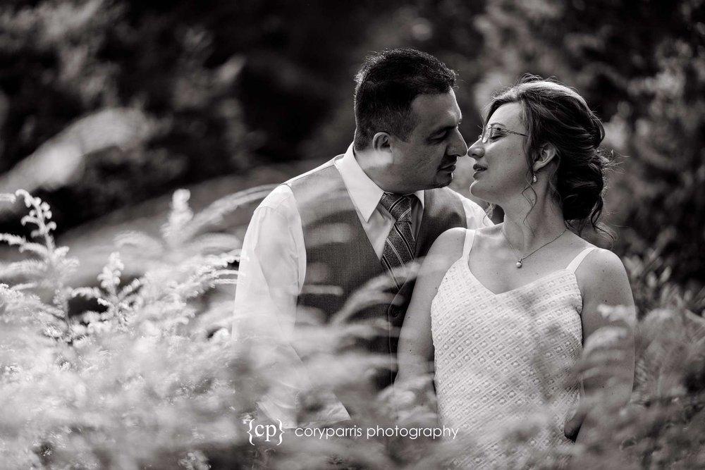 186-seattle-courthouse-wedding.jpg