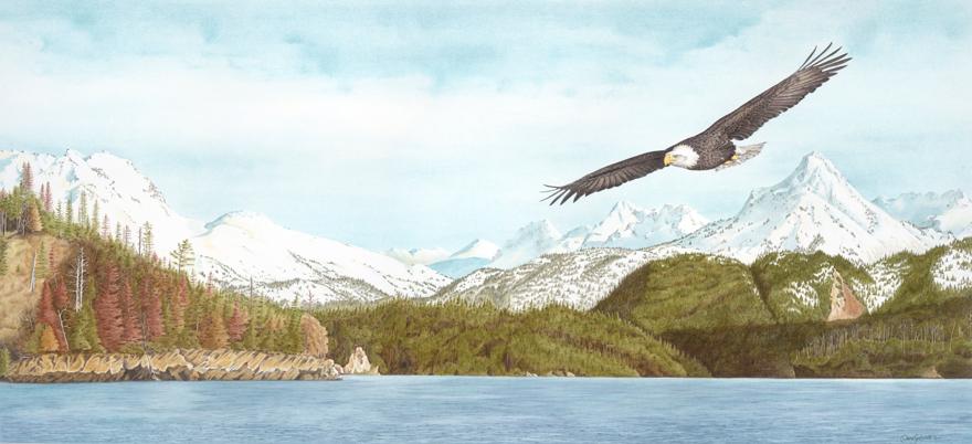 bald-eagle[1].jpg