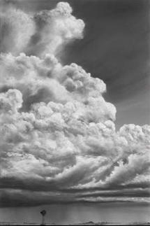 Prairie Wind.jpg