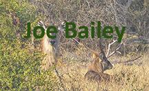 Joe Bailey nameplate.jpg