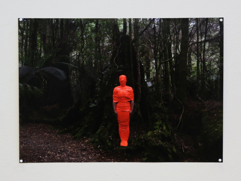 Macarena Perich, Tarkine (detail), 2018, 217 photocopies, Photograph (Photo credit: Mat Carey)