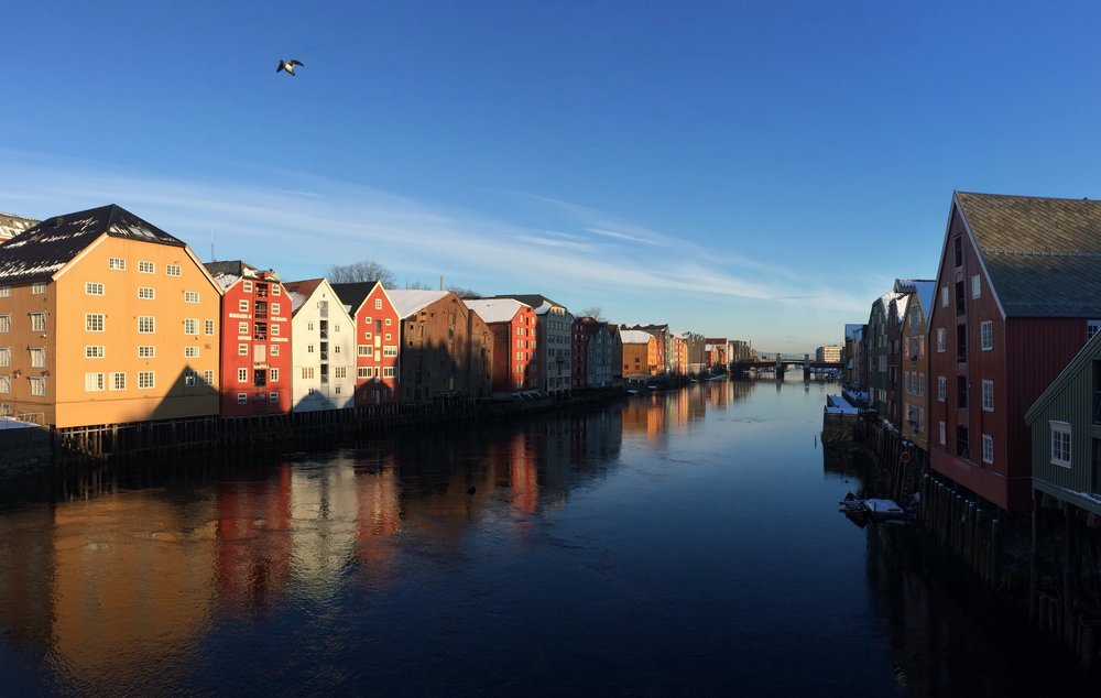 Taking advantage of some early morning light in Trondheim.