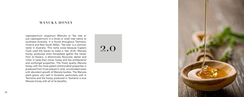 Project 3 Final_pdf edited Hive5.jpg