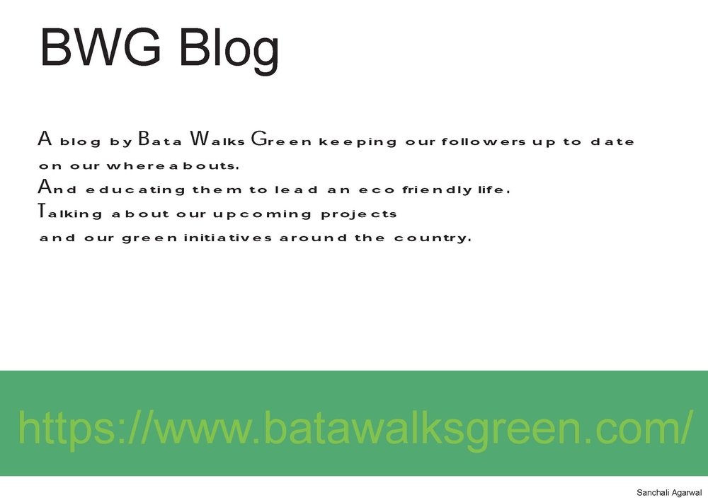BWG Projects_Page_36.jpg