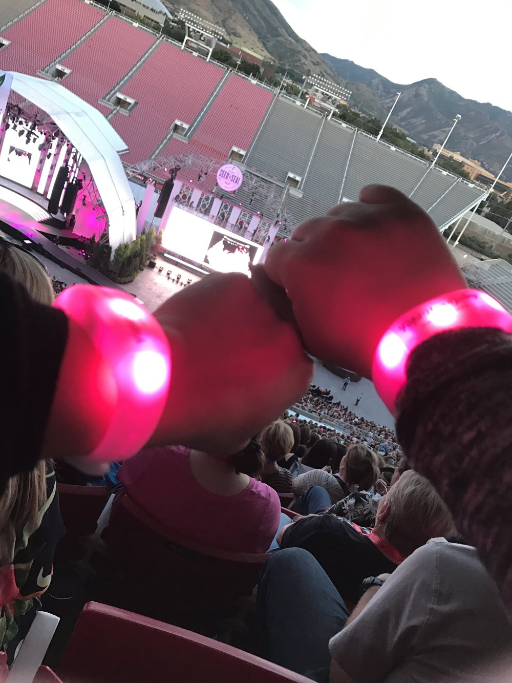 This year, YL gave us these light up wristbands that flashed different colors simultaneously and for different things like rank recognition, and the American colors! It was really cool to see!