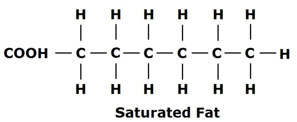 Note: there are no double bonds. This means the fatty acid is SATURATED. A glycerol backbone that has 3 saturated fatty acids attached is a SATURATED FAT. Since there are no carbon double bonds, the fat is not very viscous. Hence, saturated fats are typically solid at room temperature.