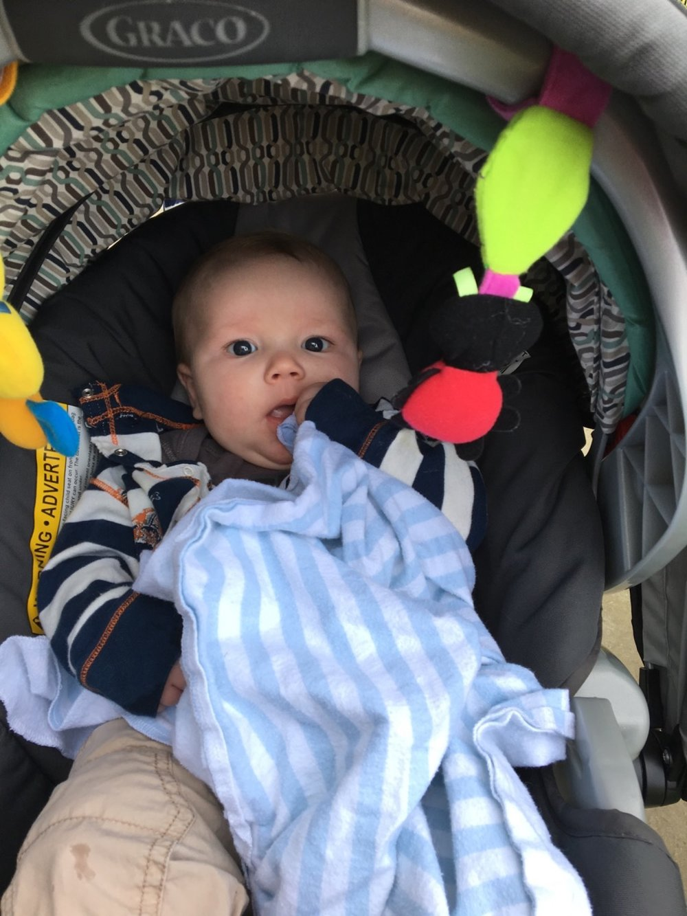 Loves his carseat bugs