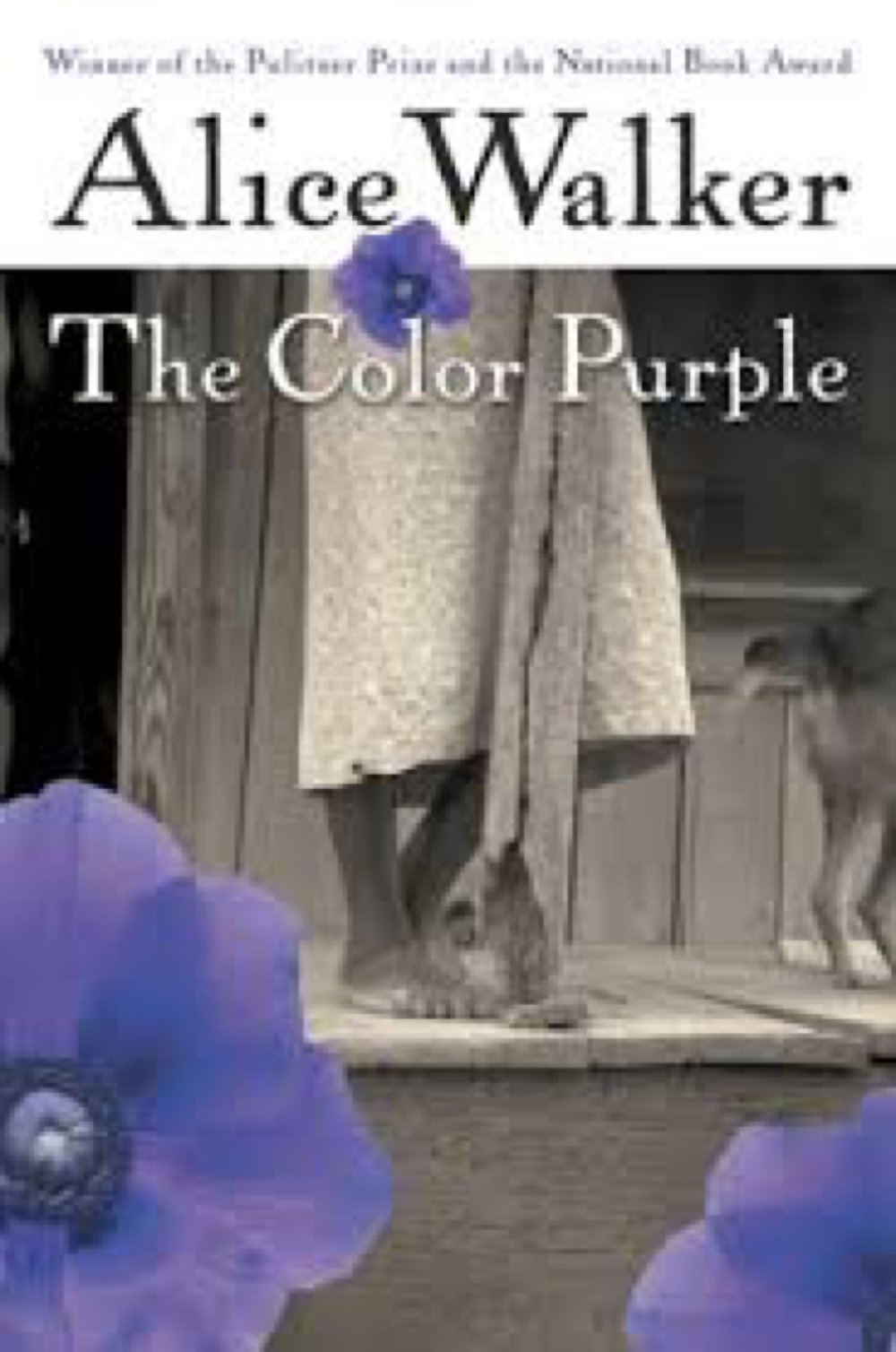 an analysis of the color purple novel by alice walker Quizlet provides an analysis of the main characters in the color purple a novel by alice walker literature activities, flashcards and games home / the color purple analysis if graphic incest on the first page of a novel is not nc-17.
