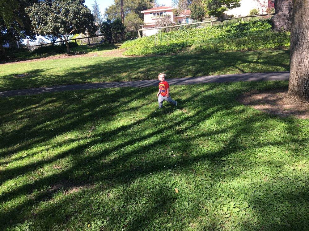 Exploring the park