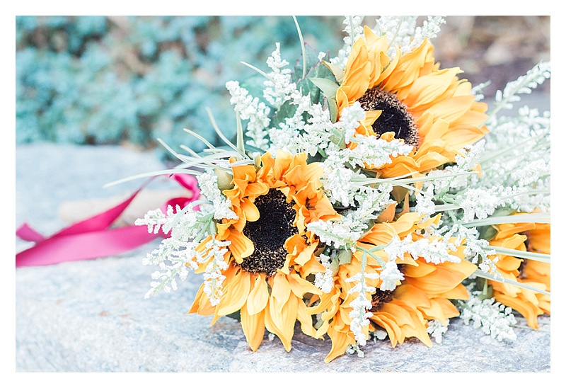 That-Wandering-Light-Charlotte-NC-Cleveland-OH-Wedding-Family-Real-Estate-Photographer_2406.jpg