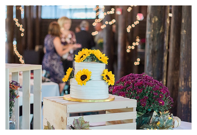 That-Wandering-Light-Charlotte-NC-Cleveland-OH-Wedding-Family-Real-Estate-Photographer_2411.jpg