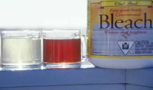Chlorinating (bleaching) a cup of tea (left)