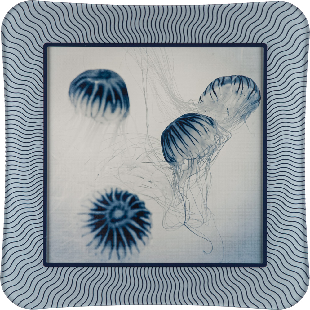Jellyfish with Matching Prisma