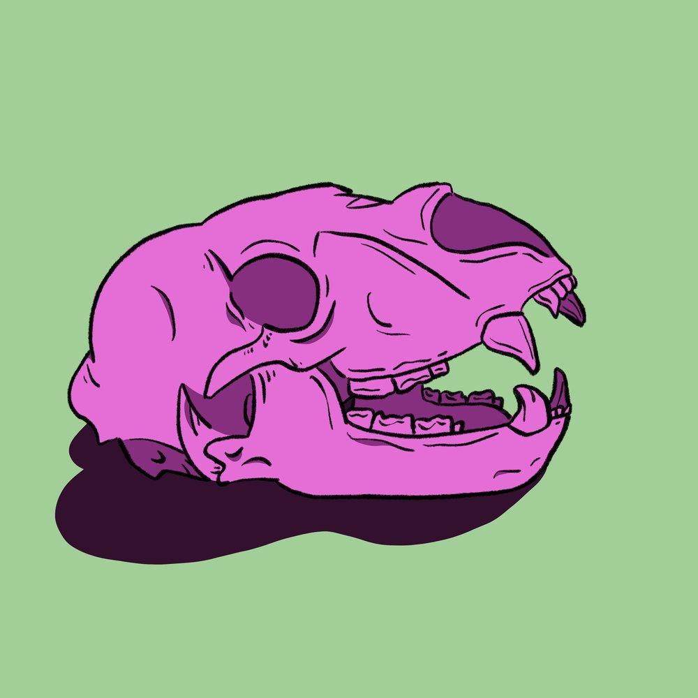 skull_3_small.jpg