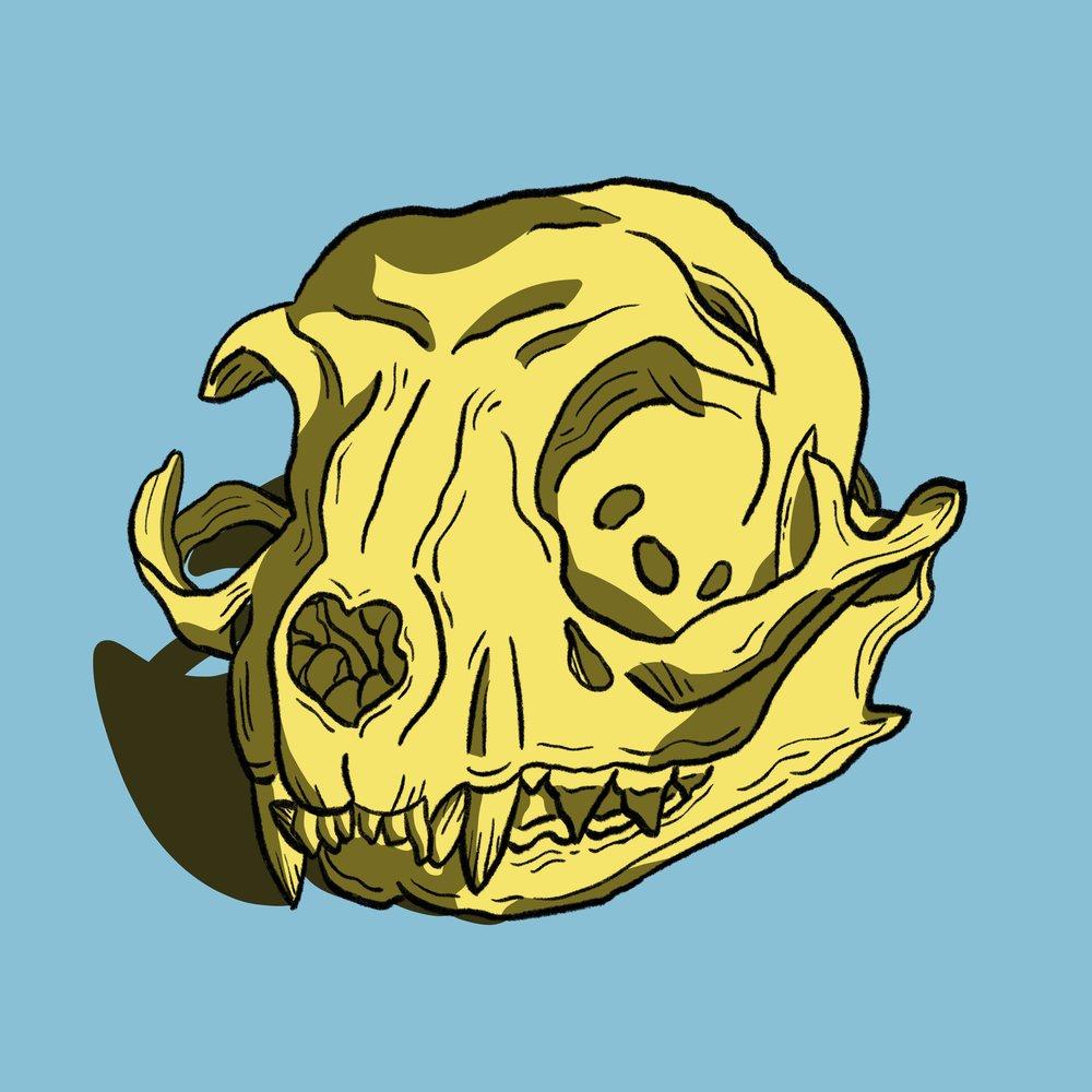skull_6_small.jpg