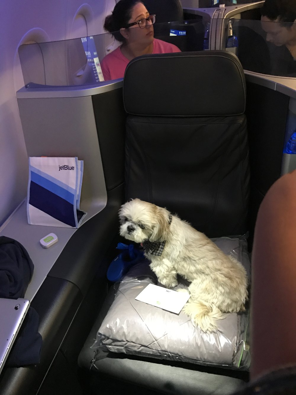 Ruby  loves JetBlue's pet-friendly Mint Class.