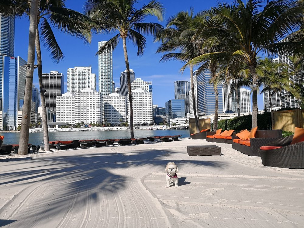 The manmade beach at Mandarin Oriental Miami.