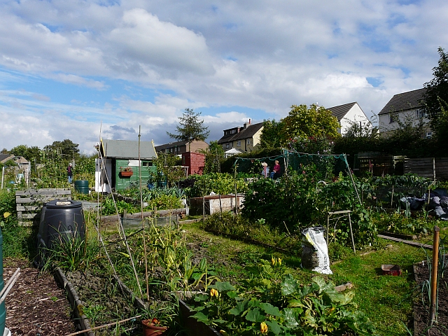 Ollersett Allotments (1) P1030124.JPG
