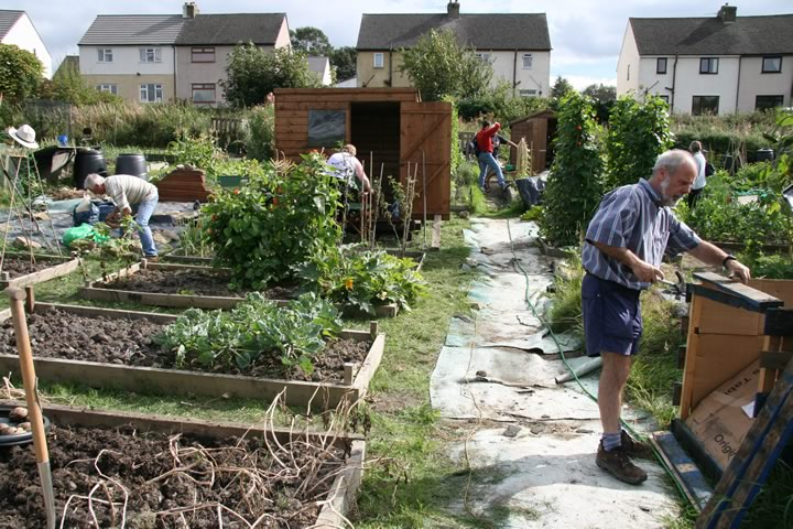 AllotmentOpenDay-3[1].jpg