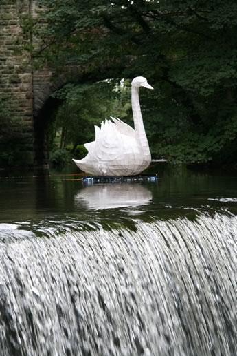 SwanQueensBridge2(50k).jpg