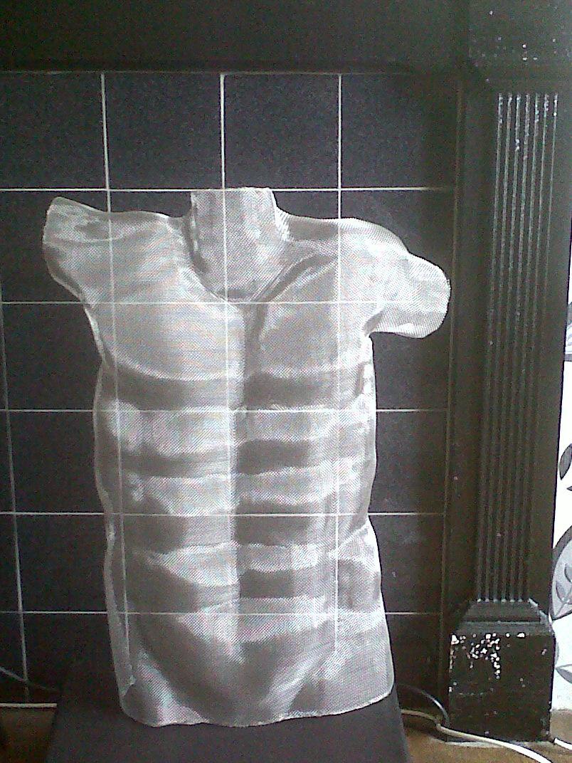 torso wire mesh.jpg