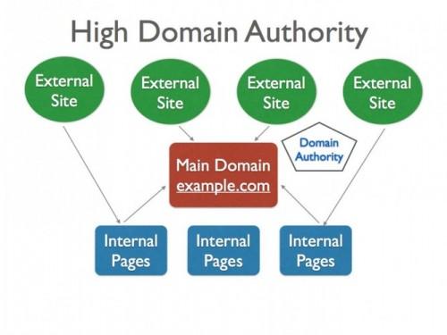 Domain Authority?