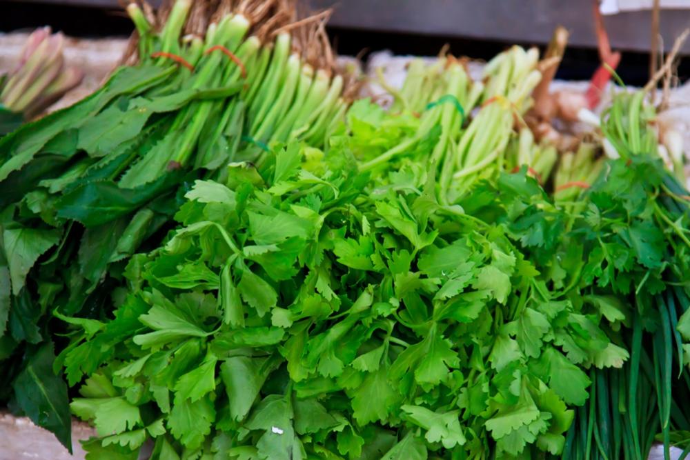 Lehtivihanneksissa on runsaasti K-vitamiinia. K1-vitamiinia esiintyy aina lehtivihreän rinnalla, joten intensiivisen vihreästä väristä voi päätellä, että K-vitamiinia on paljon.