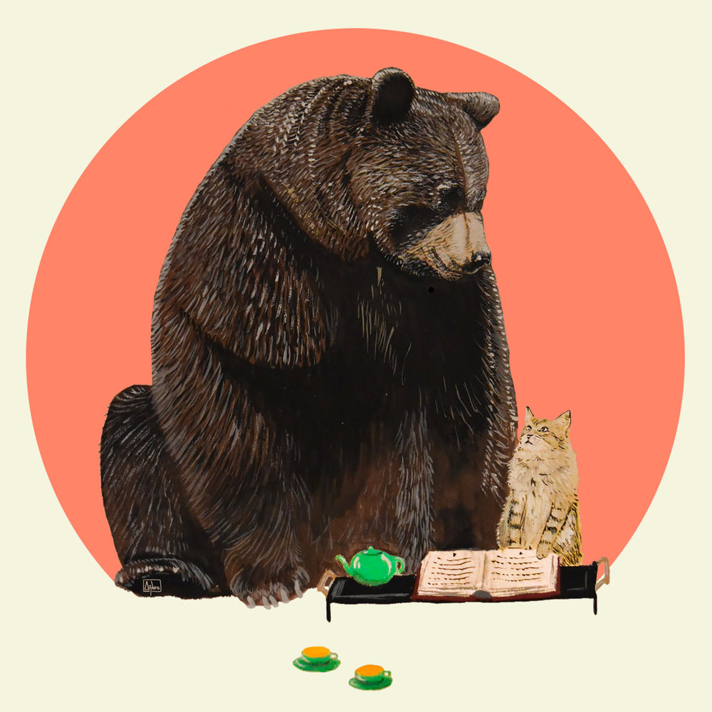 Bear and Cat – an illustrated t-shirt by artist Robert Clear DfcaMdZ