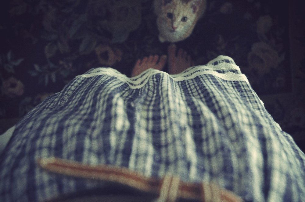 dress and cat