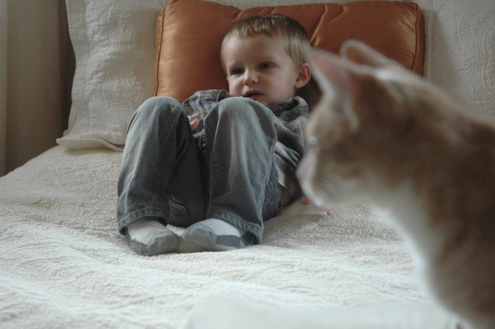 cat and kid