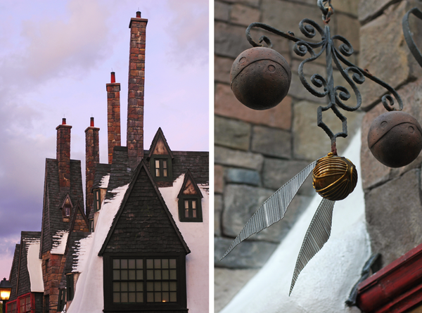 Fine and Feathered Wizarding World of Harry Potter