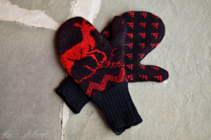Fine and Feathered DIY mittens