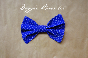 Fine and Feathered Dog Bow Tie DIY