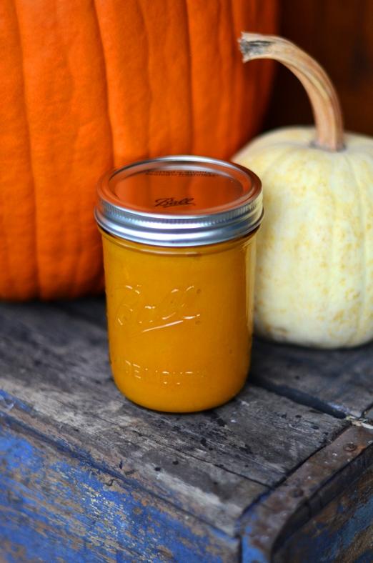 Fine and Feathered Pumpkin Puree
