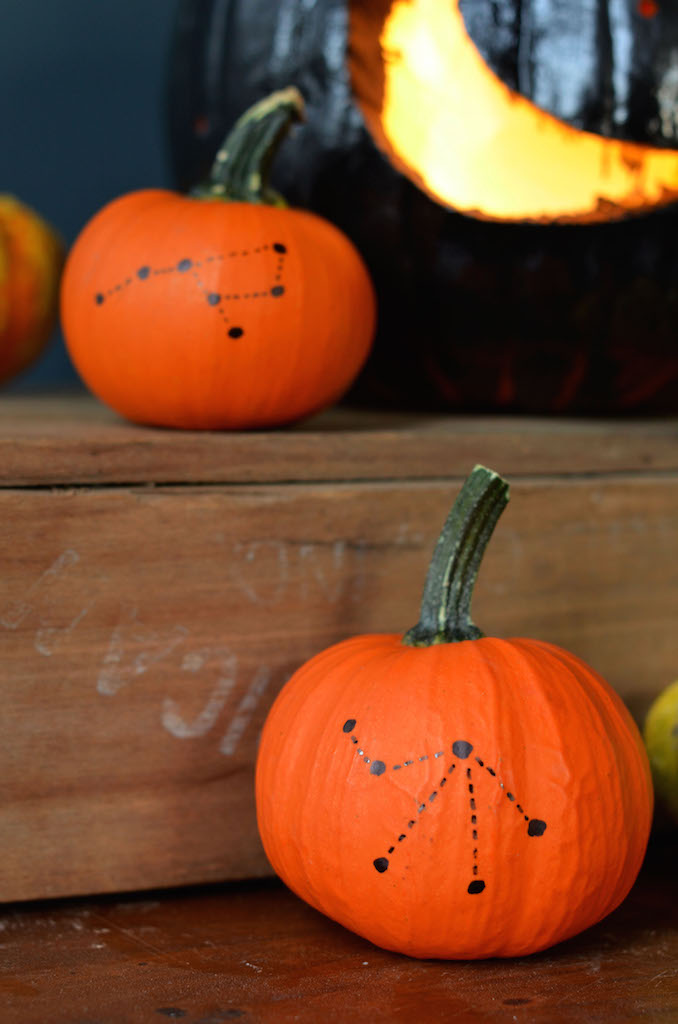 Fine and Feathered - Constellation Pumpkins