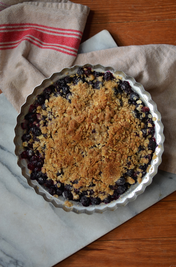 Fine and Feathered - Simple Blueberry Cobbler