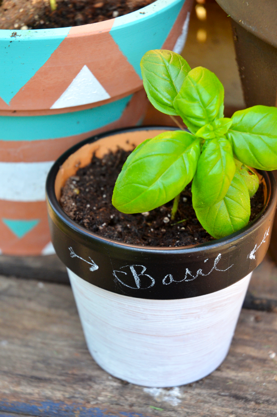 Fine and Feathered - Chalkboard Plant Pot