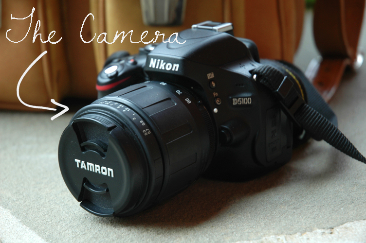 Fine and Feathered Blog