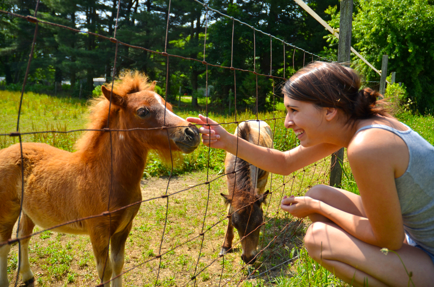 This past weekend me and my mamma (that her, above!) went out in search of some strawberry picking, and on our way we came across an entire farm of miniature horses and ponies! Well.. of course we had to pull over! And we were so surprised when they ran right up to the fence to see us!