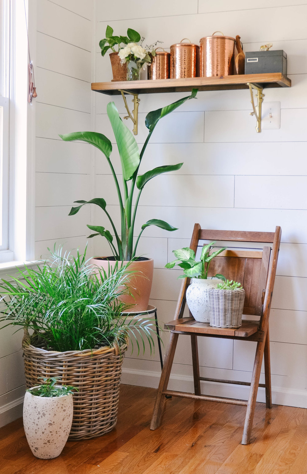 Josie Davis Home Styling